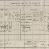 Carver Census Records : Carver Family